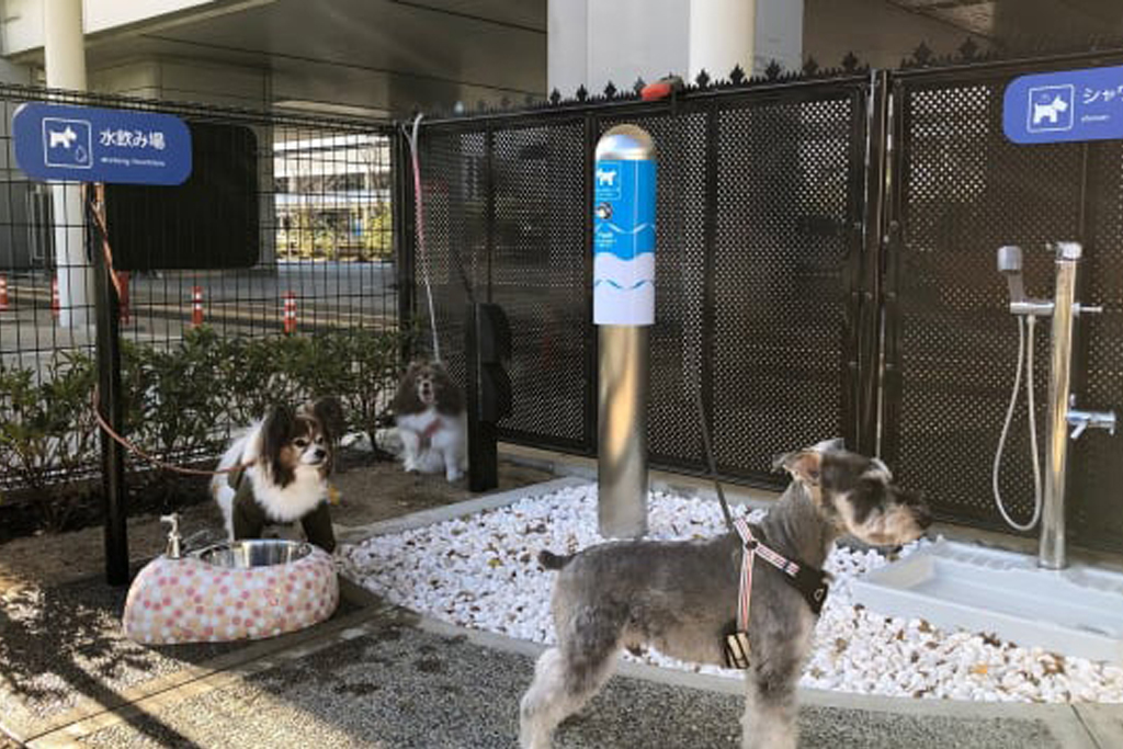 Osaka Airport Builds | Bathroom For Dogs
