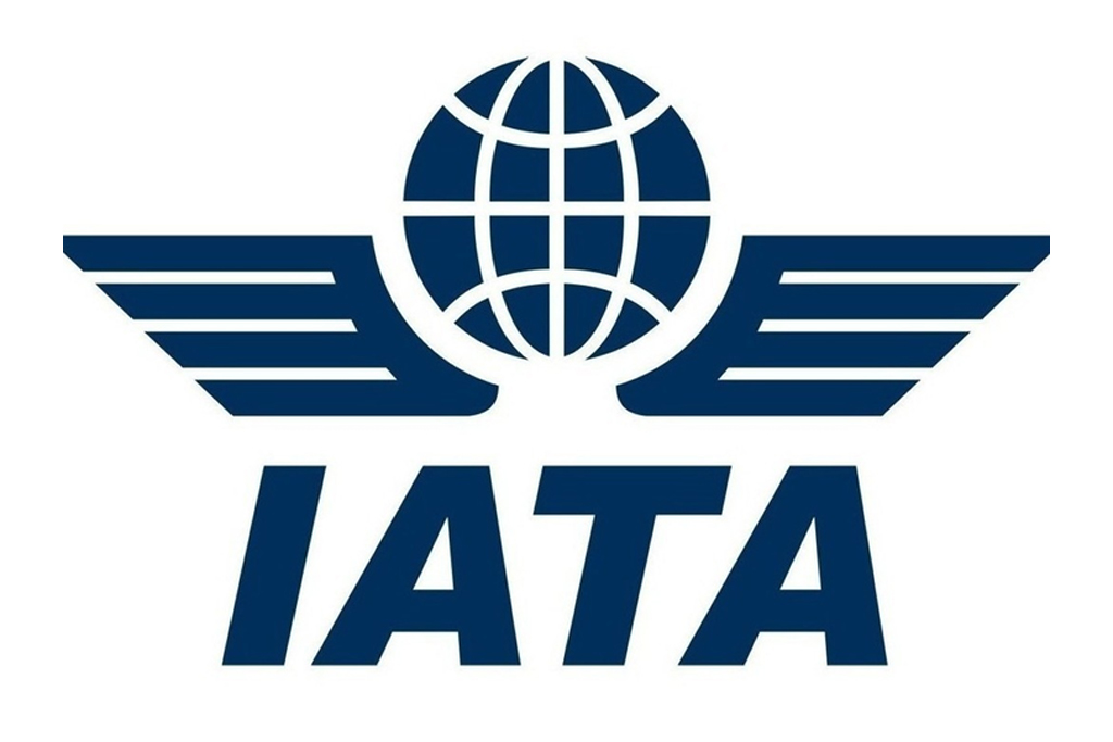 Slower Than 2018 | IATA Reports Airline Industry's 2019