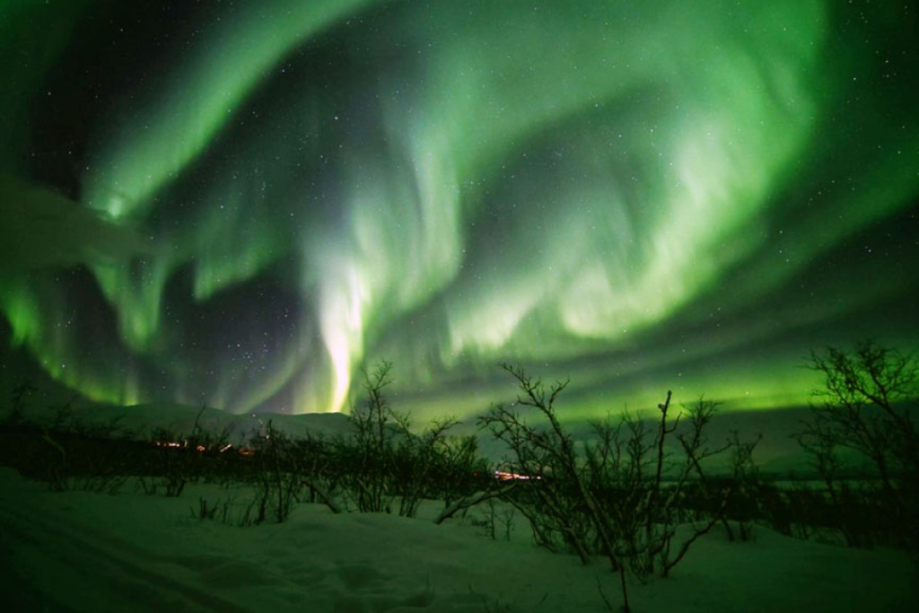 Arctic Expert Shares | Free Virtual 'Lights over Lapland'